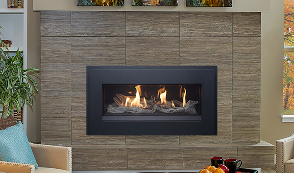 Pacific Energy The Esprit Linear Gas Fireplace